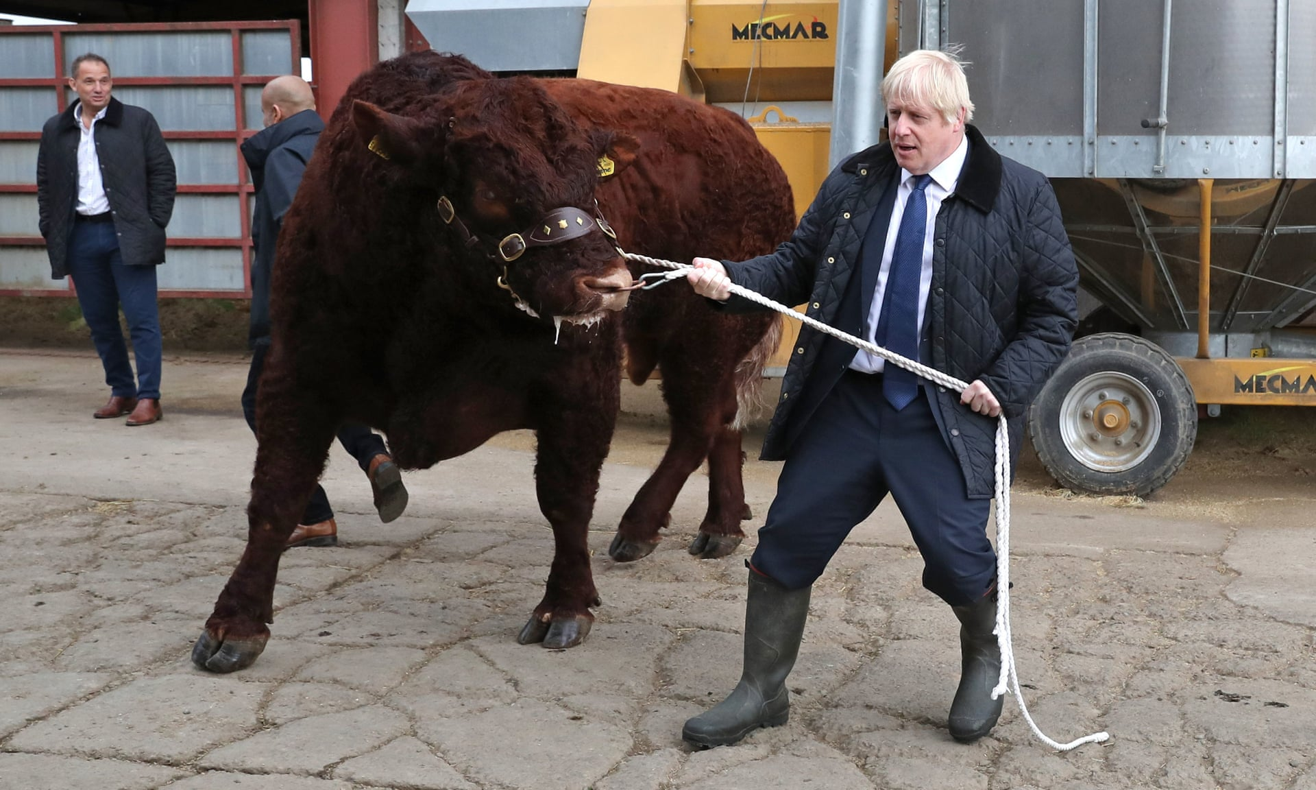 boris-johnson-with-bull-guardian-6sept2019